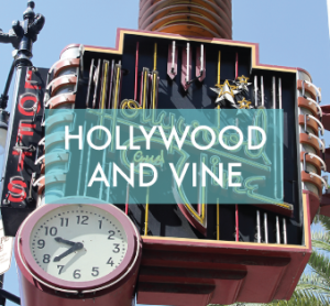 Hollywoodandvine