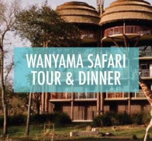 wanyamasafaritour