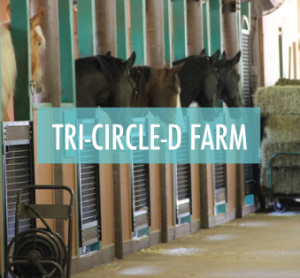 TriCircleD