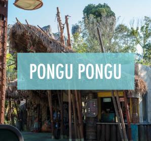 PonguPongu